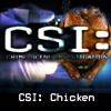 csi_chicken