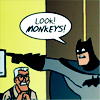 """look monkeys"", random, i need a distraction, batman"