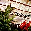 *is dead*