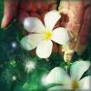 daturaangel812 userpic