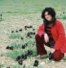 negev2005