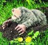 molespeople userpic