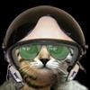 Аэро-кот