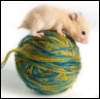 sewing_hamster userpic