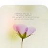 purpleglitter1 userpic