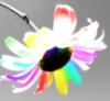 fufu_flower userpic