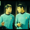 star trek mccoy/spock