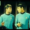 Antenna: star trek mccoy/spock