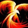 ironphoenix: flaming