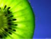 prancingposeur userpic