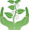 crunchygreen userpic