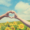 Pale Jewel: Heart you always