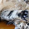 baufil userpic