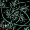 rose, fractal