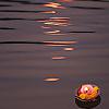 nightflower24 userpic