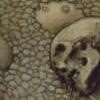 totenschädel, memento mori, skull, sol ist tot, vanitas
