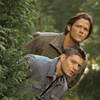 miss california.: [spn] winchesters - *are stealthy*