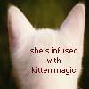 kitten magic