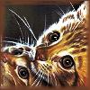 bleukittie: Two cats