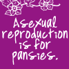 Jacqueline: ms sci asexual reproduction