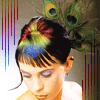 peacock hairdo