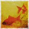 scarlett_bat userpic