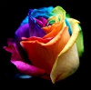 ilovelextacy userpic