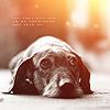 Manu: dog sad