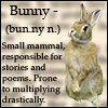 def of bunny