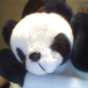 cbc the other way - pandas <3