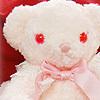 x. cute (bear)