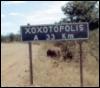 xoxotopolis