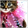 Celia: kitty