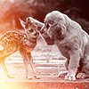 annj_g80: bambi