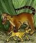 Thylacosmilus