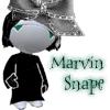 Aretha Marvin Snape