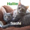 hallie and sashi