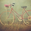 # bicycle
