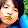 timeripple: toma clover