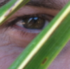 Глазъ