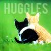 Lyn: CATS HUGGLES
