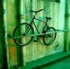 neon_tiger userpic