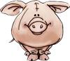 Второй свин