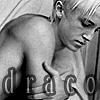 Lisbet Karlsdottir: HP-draco-bw-name