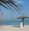 пальмы.. море