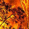 firestorm 2009