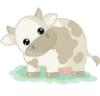 cutest cow