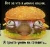 pirogi_s_kotami userpic