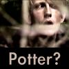 a_Potter?
