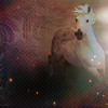 Vane: Stock Horse